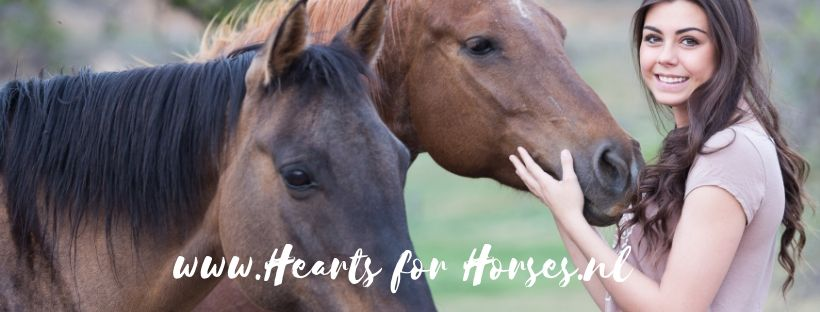 www.Hearts for Horses.nl